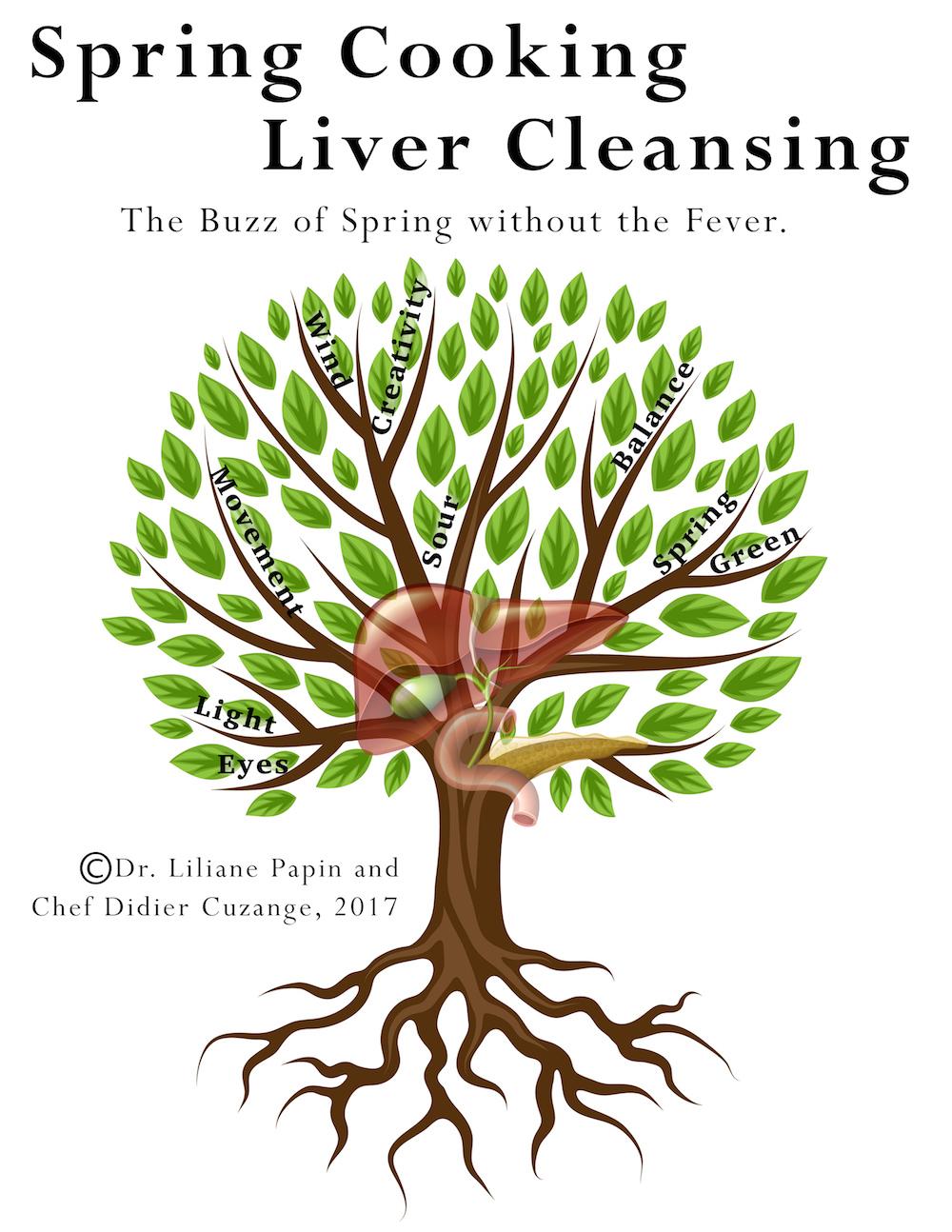 New ebook on Liver and Gallbladder Health