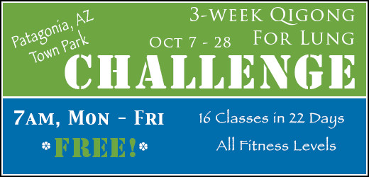 3 week qigong for lung challenge